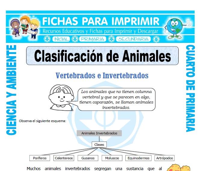 ficha de Clasificación de Animales para Cuarto de Primaria