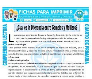 Ficha de Diferencia entre Gemelos y Mellizos para Cuarto de Primaria
