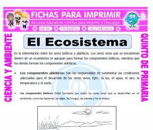 Ficha de El Ecosistema para Quinto de Primaria