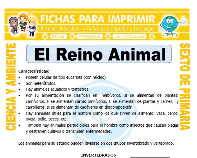 Ficha de El Reino Animal para Sexto de Primaria