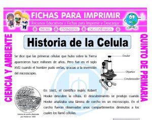 Ficha de Historia de la Celula para Quinto de Primaria