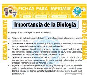 Importancia de la Biologia para Sexto de Primaria