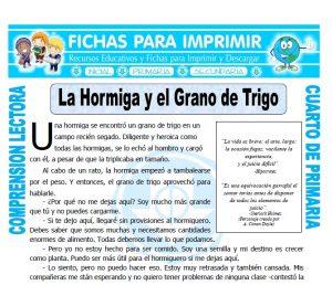 Ficha de La Hormiga y el Grano de Trigo para Cuarto de Primaria