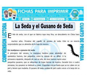 Ficha de La Seda y el Gusano de Seda para Cuarto de Primaria