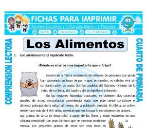Ficha de Los Alimentos para Cuarto de Primaria