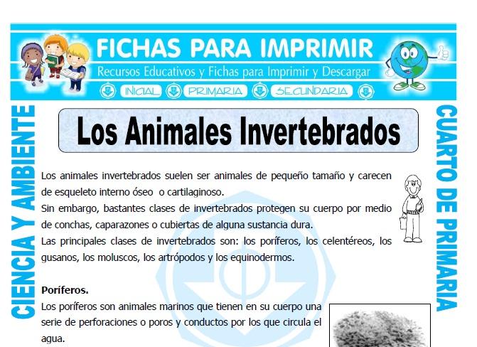 ficha de Los Animales Invertebrados para Cuarto de Primaria