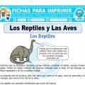 Los Reptiles y Las Avespara Cuarto de Primaria
