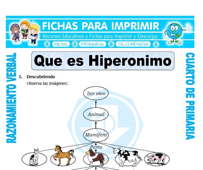 ficha de Que es Hiperonimo para Cuarto de Primaria