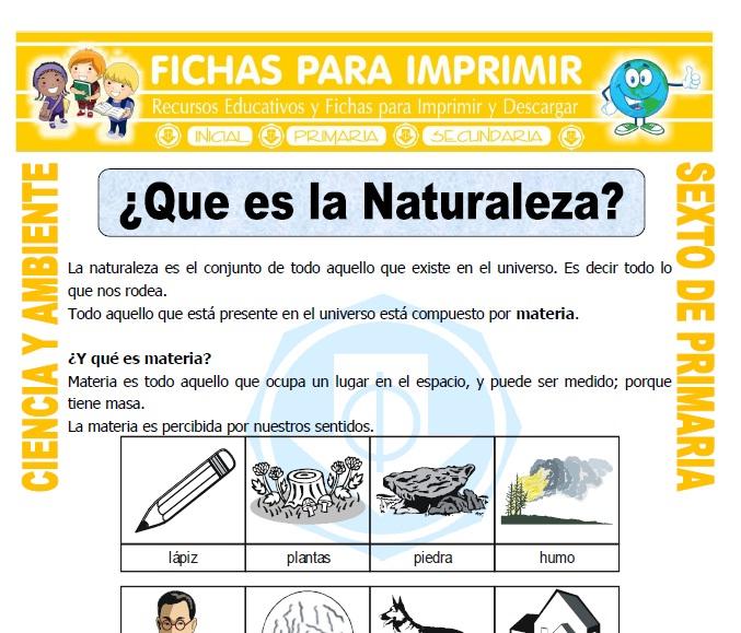 Ficha de Que es la Naturaleza para Sexto de Primaria