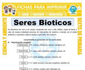 Seres Bioticos para Sexto de Primaria