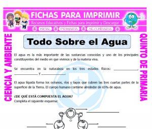 Ficha de Todo Sobre el Agua para Quinto de Primaria