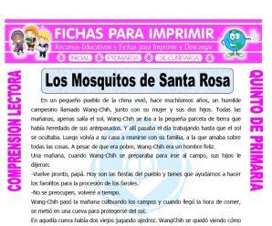 Los Mosquitos de Santa Rosa Quinto Primaria