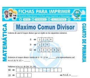 ficha de Maximo Comun Divisor para Cuarto de Primaria