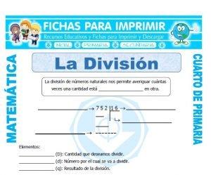 ficha de Que es la Division para Cuarto de Primaria