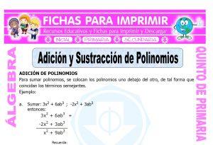 Adicion y Sustraccion de Polinomios para Quinto de Primaria
