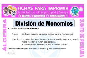 Division de Monomios para Quinto de Primaria