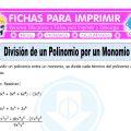 Division de un Polinomio por un Monomio para Quinto de Primaria