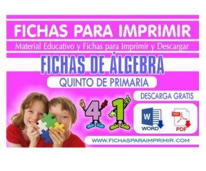 Ejercicios de Algebra de Quinto de Primaria