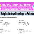 Multiplicacion de un Monomio por un Polinomio