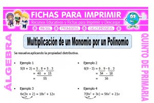 Multiplicacion de un Monomio por un Polinomio para Quinto de Primaria