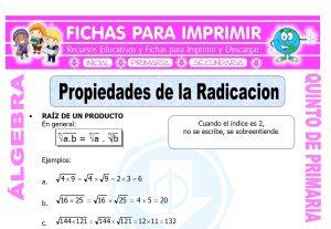 Propiedades de la Radicacion para Quinto de Primaria