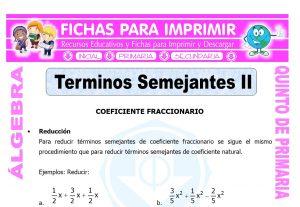 Terminos Semejantes con Coeficiente Fraccionario