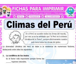 Climas del Perú para Quinto de Primaria