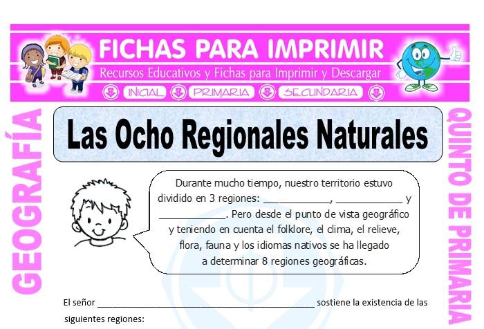 Ficha de Región Chala y Yunga para Quinto de Primaria