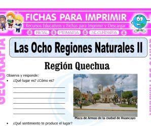 Región Quechua y Suni para Quinto de Primaria