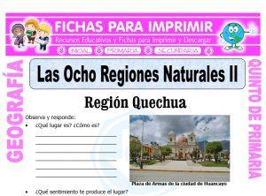 Ficha de Región Quechua y Suni para Quinto de Primaria