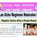 Región Rupa Rupa y Omagua para Quinto de Primaria