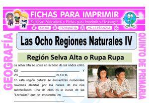 Ficha de Región Rupa Rupa y Omagua para Quinto de Primaria