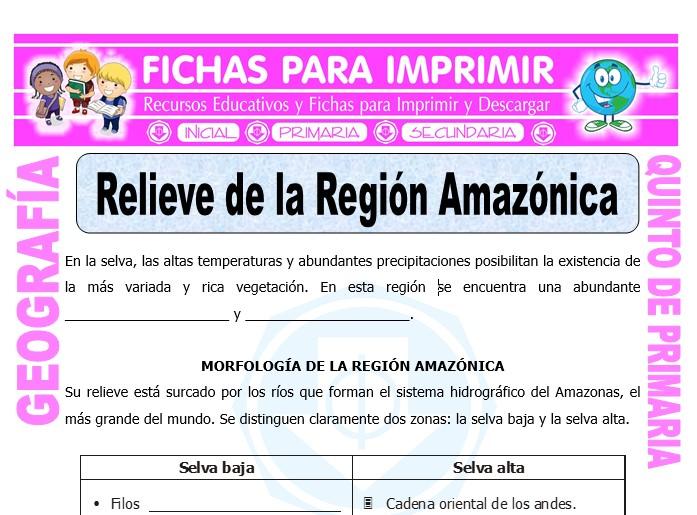Ficha de Relieve de la Región Amazónica para Quinto de Primaria
