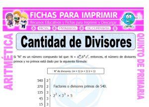 Ficha de Cantidad de Divisores para Quinto de Primaria