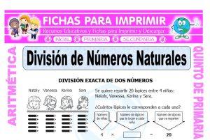 División de Números Naturales para Quinto de Primaria