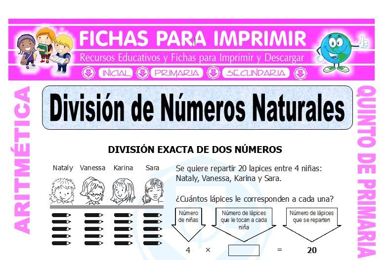 Ficha de División de Números Naturales para Quinto de Primaria