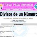 Divisor de un Número para Quinto de Primaria