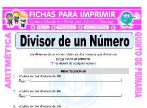 Ficha de Divisor de un Número para Quinto de Primaria