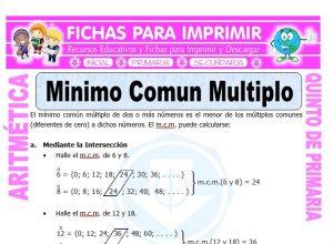Ficha de Ejercicios de Minimo Comun Multiplo para Quinto de Primaria