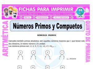 Ficha de Números Primos y Compuestos para Quinto de Primaria