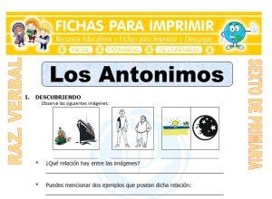 Ficha de Los Antonimos para Sexto de Primaria