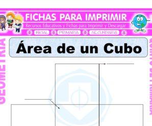 Área de un Cubo para Quinto de Primaria
