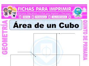 Ficha de Área de un Cubo para Quinto de Primaria