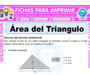 Área del Triangulo para Quinto de Primaria