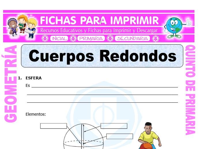 Ficha de Cuerpos Redondos para Quinto de Primaria