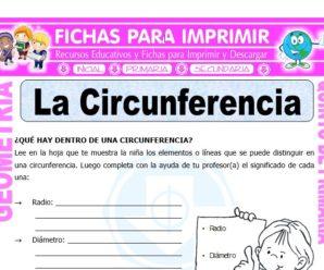 La Circunferencia para Quinto de Primaria
