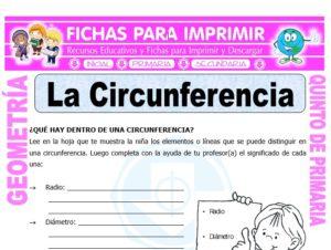 Ficha de La Circunferencia para Quinto de Primaria