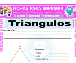 Los Triangulos para Quinto de Primaria