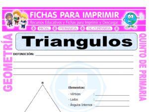 Ficha de Los Triangulos para Quinto de Primaria