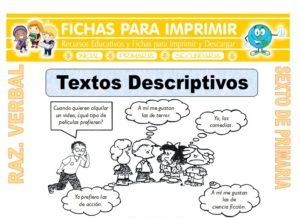 Ficha de Textos Descriptivos para Sexto de Primaria